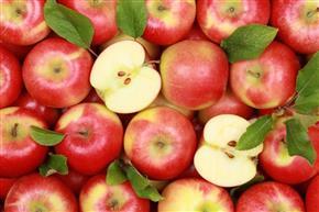 Бананы, манго и ананасы могут быть импортированы в Иран только при экспорте яблок в ответ